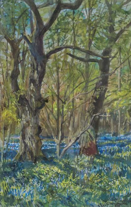 Tim Scott Bolton, Bluebell wood