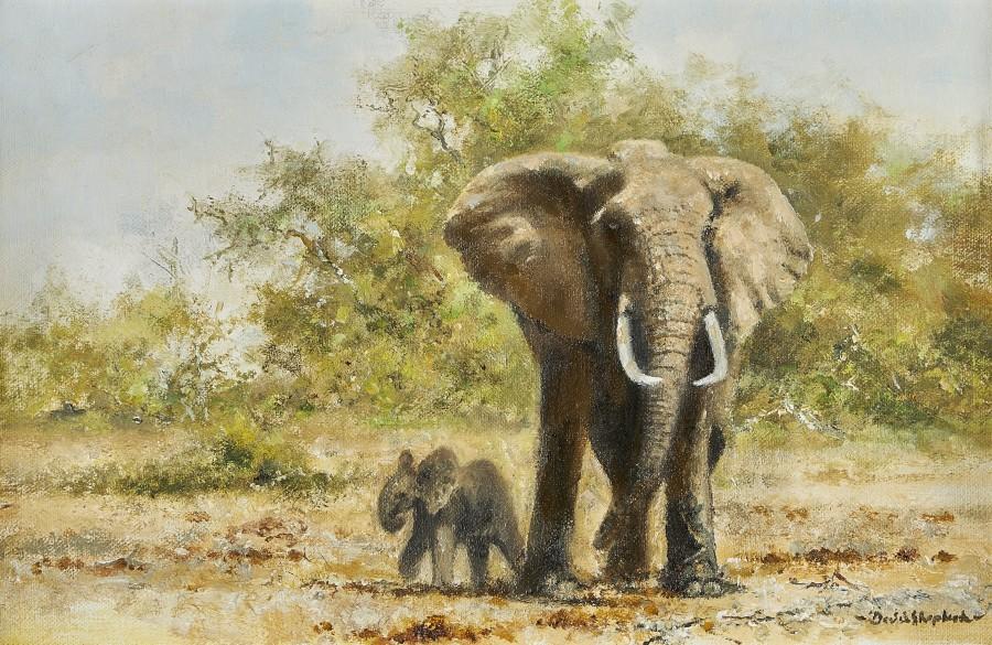 David Shepherd, Elephants