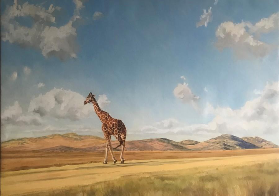 Francesca Sanders, Giraffe walking towards Borana, Kenya