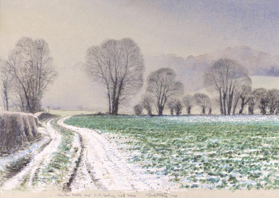 Gordon Rushmer, Winter Kale, near South Harting
