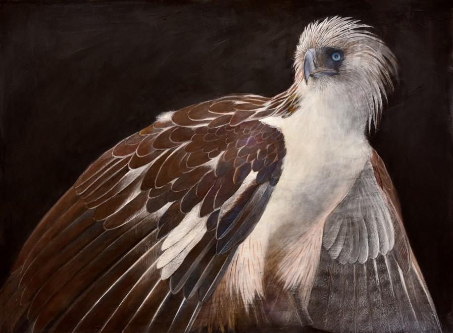 Emma Faull, Philippine Eagle