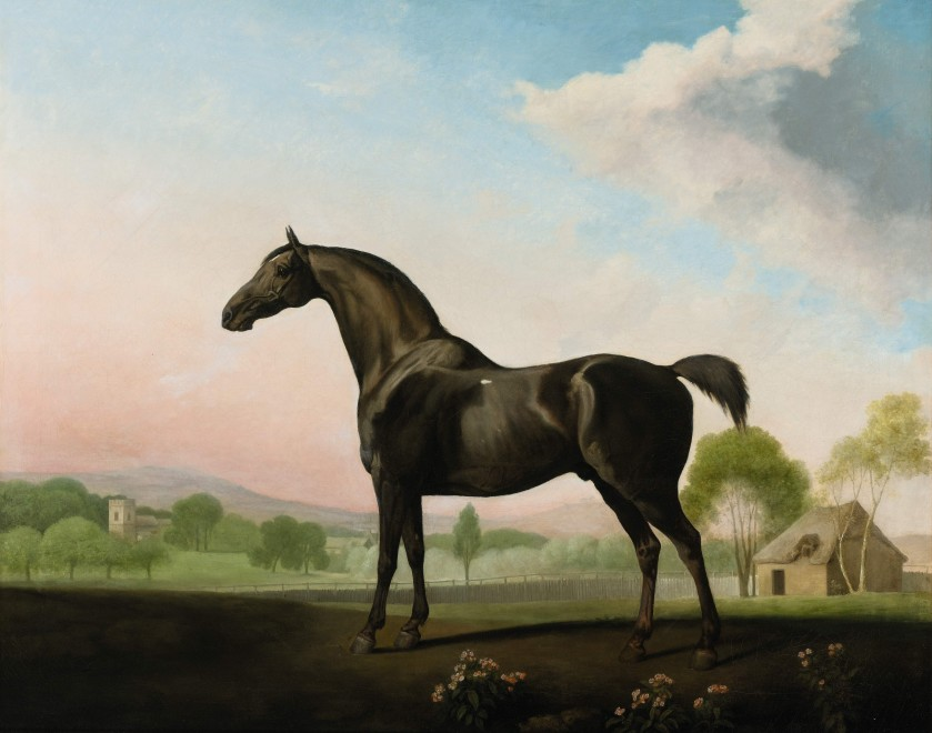 George Stubbs, ARA, Lord Grosvenor's SWEET WILLIAM in a landscape