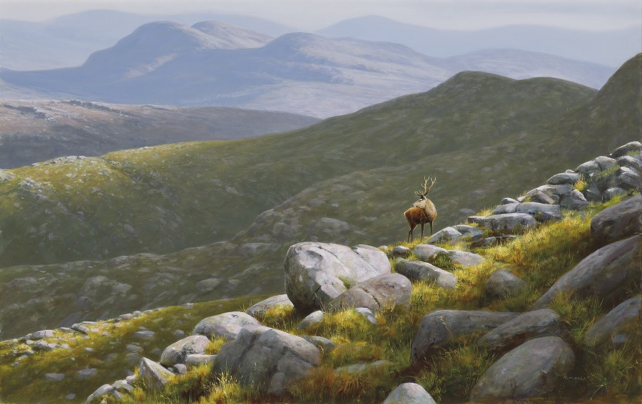 Rodger McPhail, Highland Stag