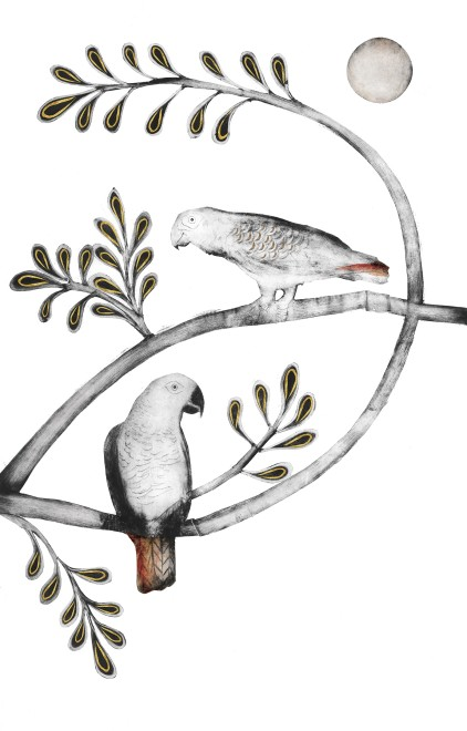 Beatrice Forshall , African Grey and Timneh Parrot