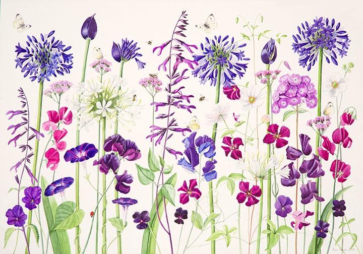Ann Fraser, Blue & Purple Border