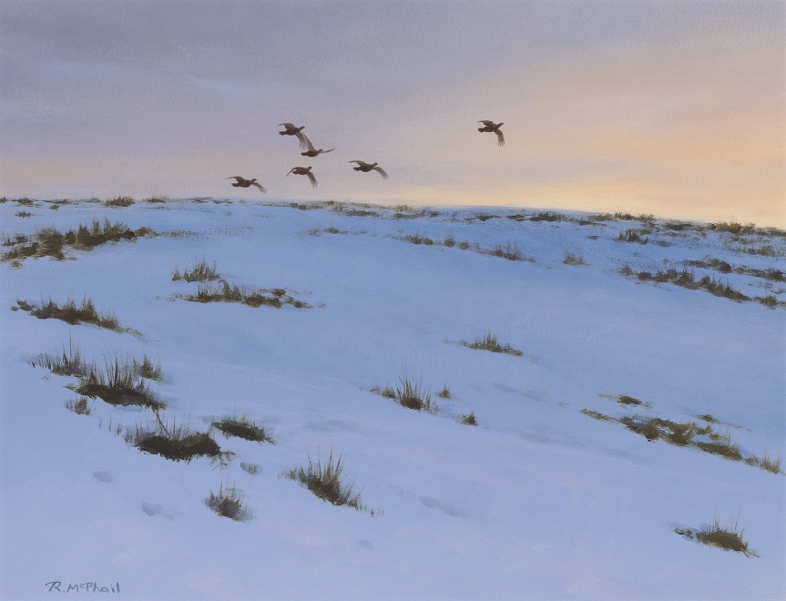 Rodger McPhail, Going to roost