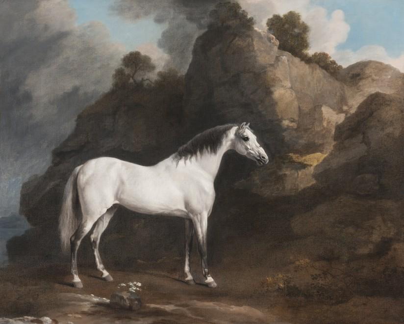 George Stubbs, ARA, The Rycote Arabian