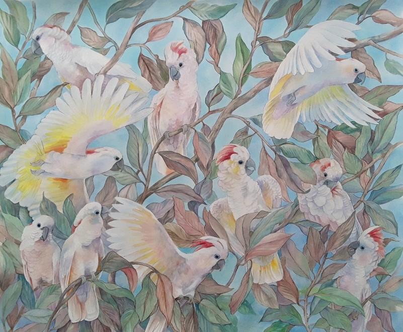 Emma Faull, Moluccan Cockatoo