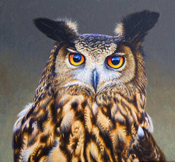 David Ord Kerr, European Eagle Owl