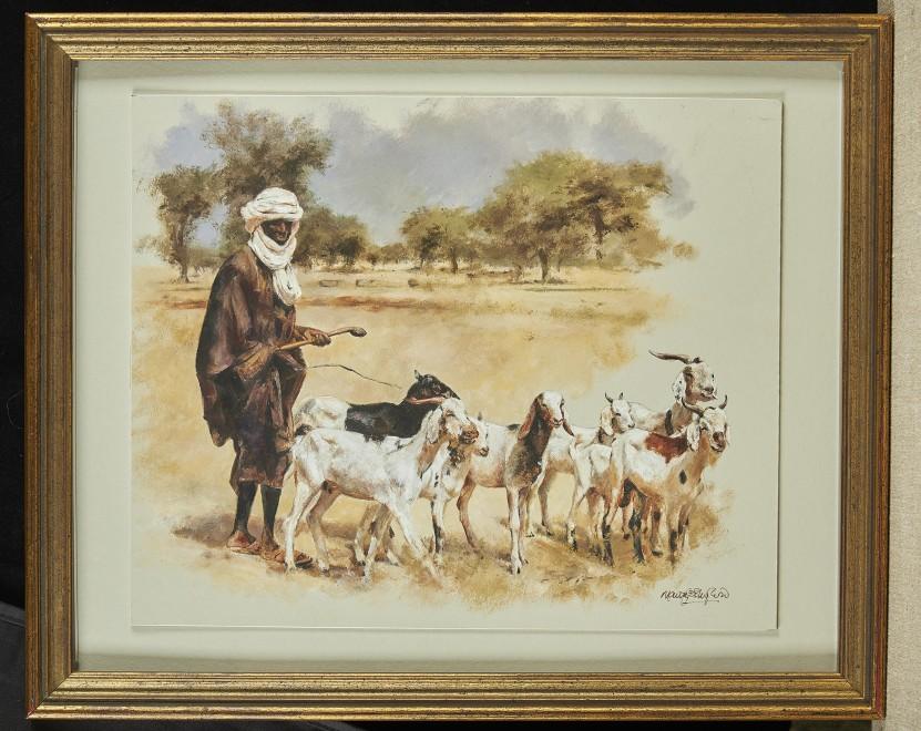 Mandy Shepherd, Goat herder, Kenya