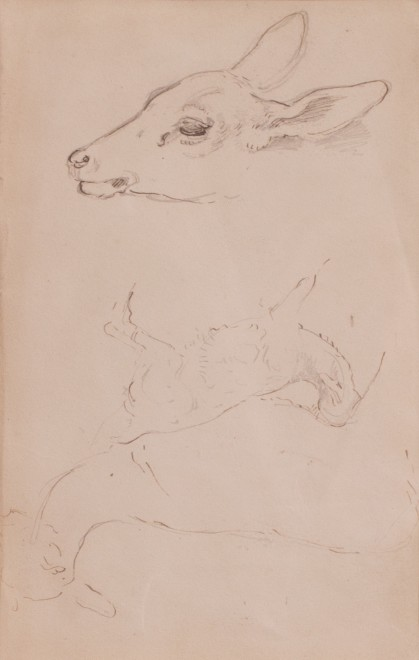William Woodhouse, Double-sided deer study