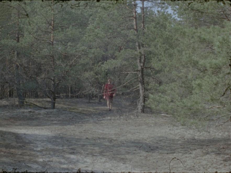 《切近》,胶卷电影截图,2019