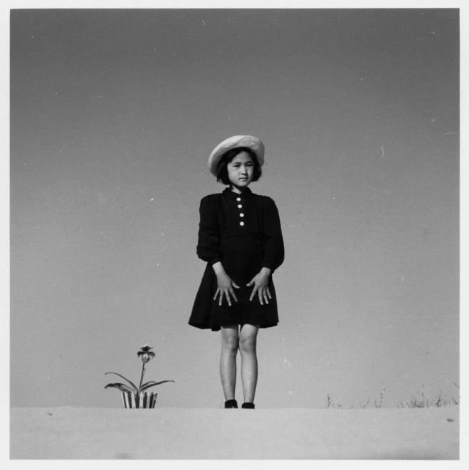 Kako与花,1949  Kako and a Flower (1949)