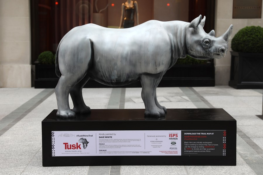 Fragile by Dave White, supported by Forevermark for the Tusk Rhino Trail © Tim Whitby for Getty