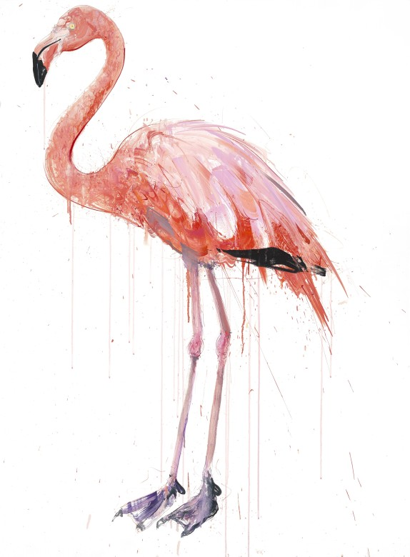 'Flamingo I' Oil on linen, 155cm x 115cm by Dave White 2019 ©