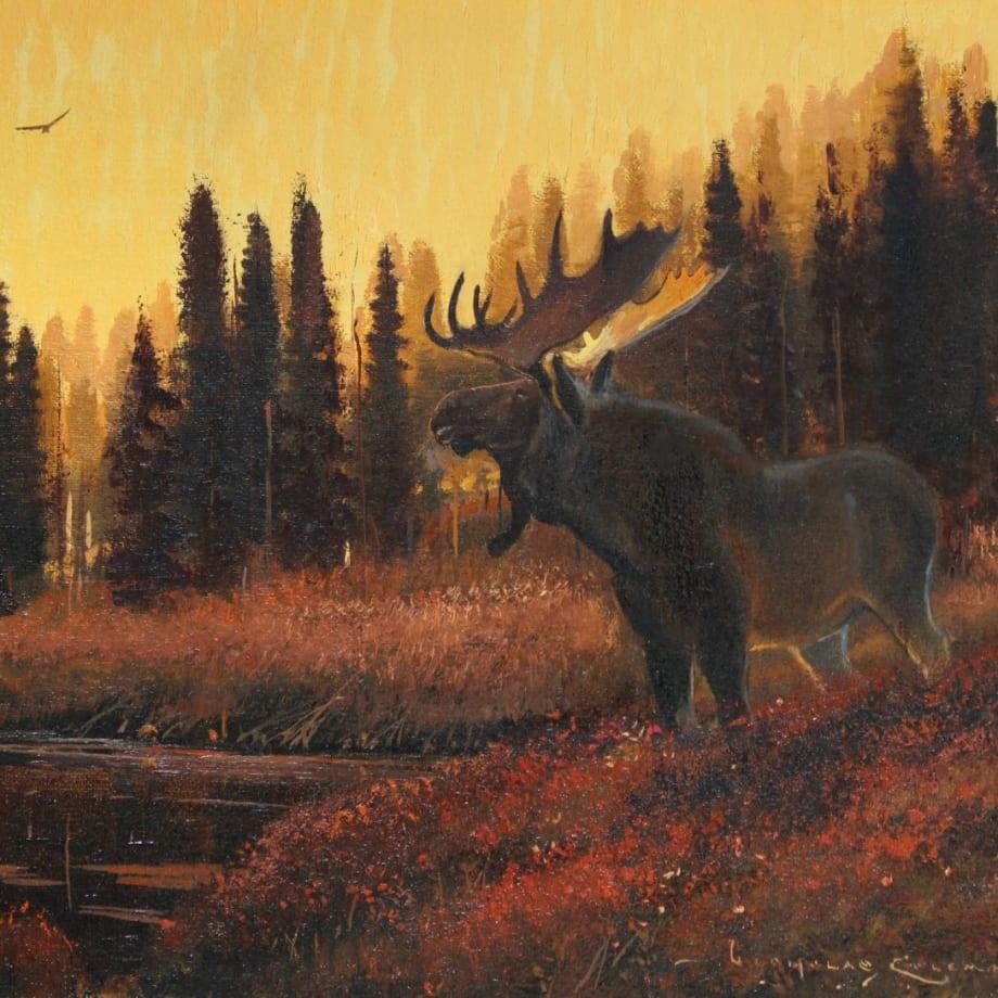 Nicholas Coleman, Young Bull at Dusk