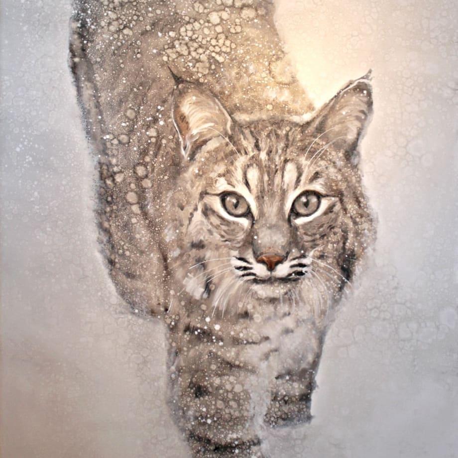 David Frederick Riley, BOB CAT