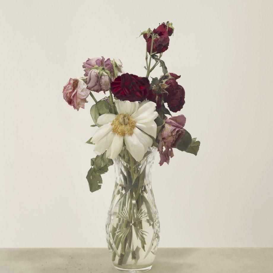 Casper Sejersen, Broken Flowers, 2019