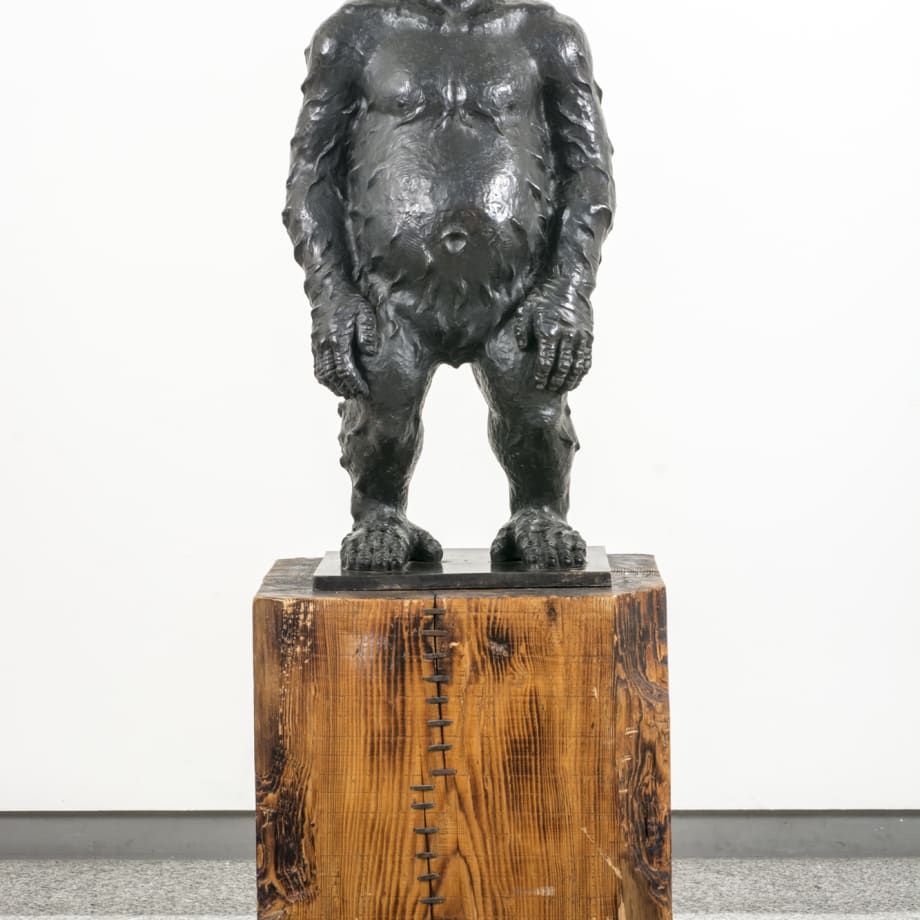 Liu Ruowang, Original SIn, 2011-2013