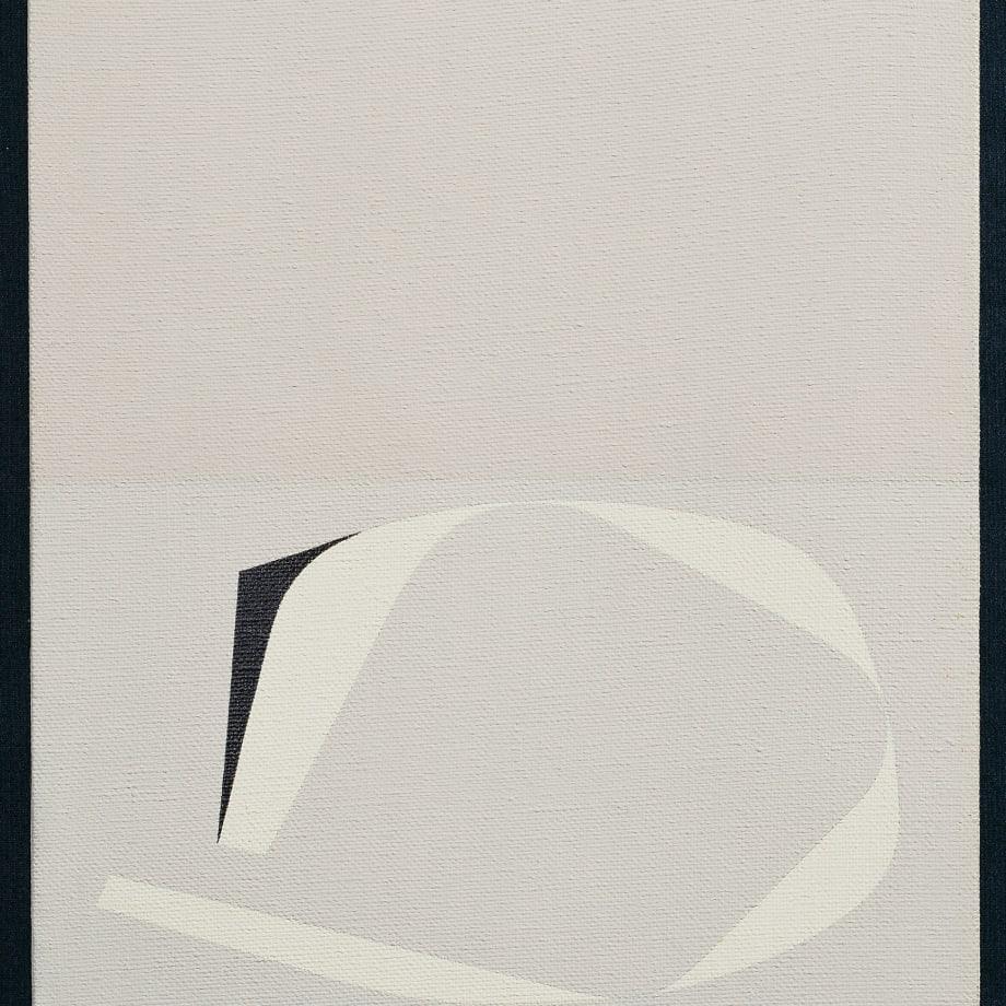 Arturo Bonfanti, Imag. 218, 1965