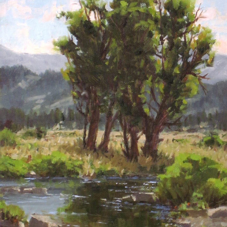 Carole Cooke, COTTONWOOD CREEK