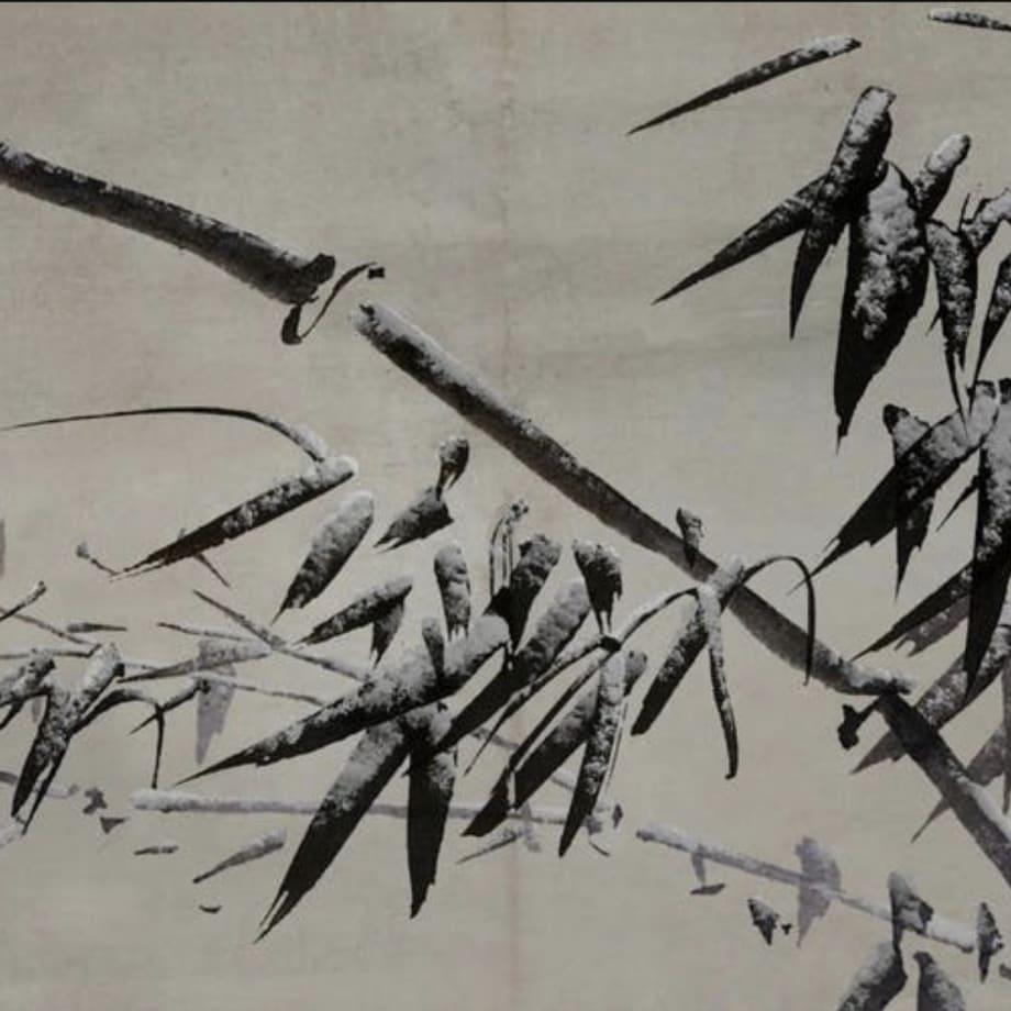 Rise of Roots | Lee Leenam video still