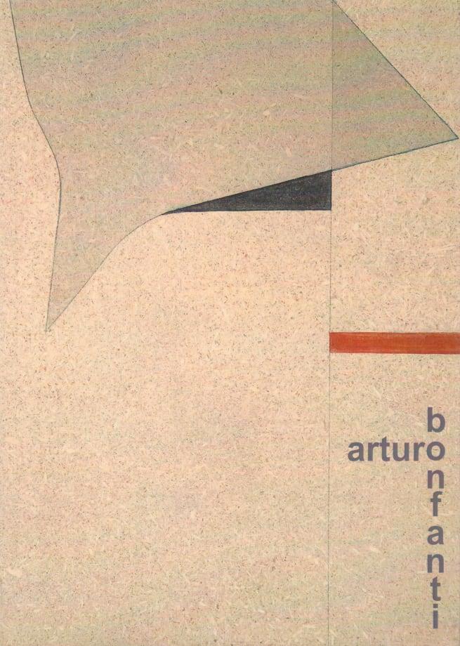 Arturo Bonfanti Pavatex e rilievi