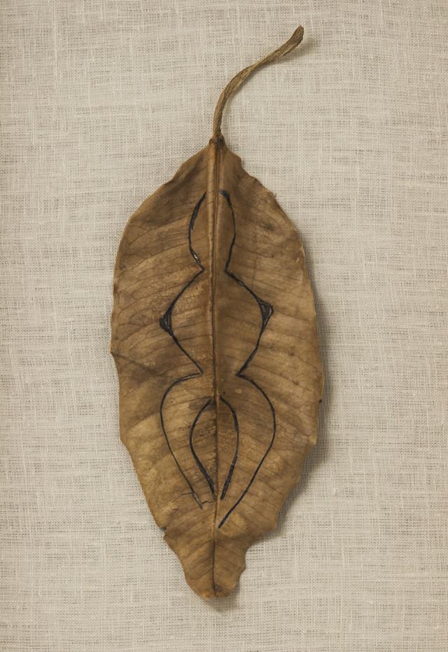 Ana Mendieta  Untitled, c. 1984  Ink on leaf  24.1 x 10.2 cm, 9 1/2 x 4 ins  39.4 x 52.7 x 5.7 cm, 15 1/2 x 20 3/4 x 2 1/4 ins, framed  Unique