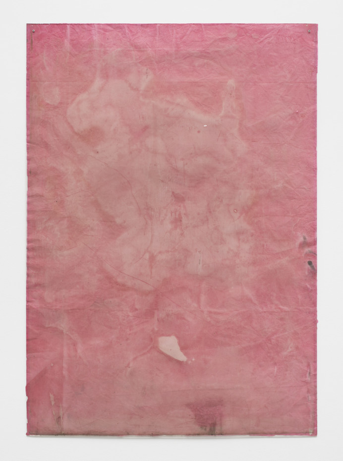Ian Kiaer Endnote, ping (pink), 2018 Acrylic, pencil on paper, Plexiglas 168 x 118.5 x 1 cm, 66 1/8 x 46 5/8 x 3/8 ins