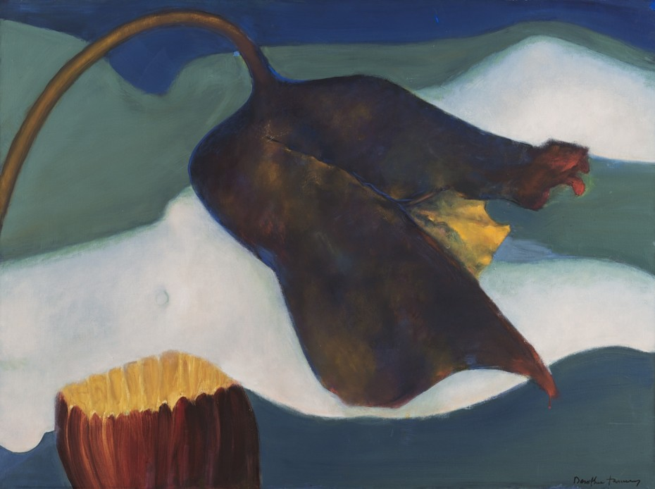 <div class=&#34;artist&#34;><strong>Dorothea Tanning</strong></div><div class=&#34;title_and_year&#34;><em>Agripedium vorax Saccherii (Clog Herb)</em>, 1997</div><div class=&#34;medium&#34;>Oil on canvas</div><div class=&#34;dimensions&#34;>97 x 130 cm, 38 1/4 x 51 1/8 ins unframed<br/>99 x 132 cm, 39 x 52 ins framed</div><div class=&#34;signed_and_dated&#34;>Signed &#34;Dorothea Tanning&#34; bottom right</div>