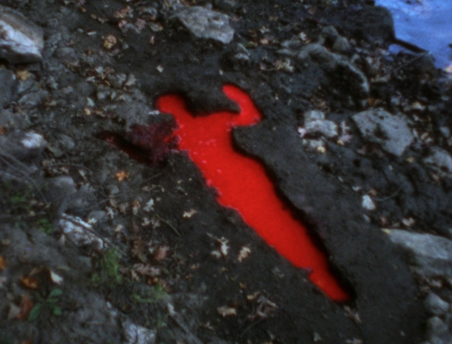 Still from Ana Mendieta, 'Silueta Sangrienta', 1975.