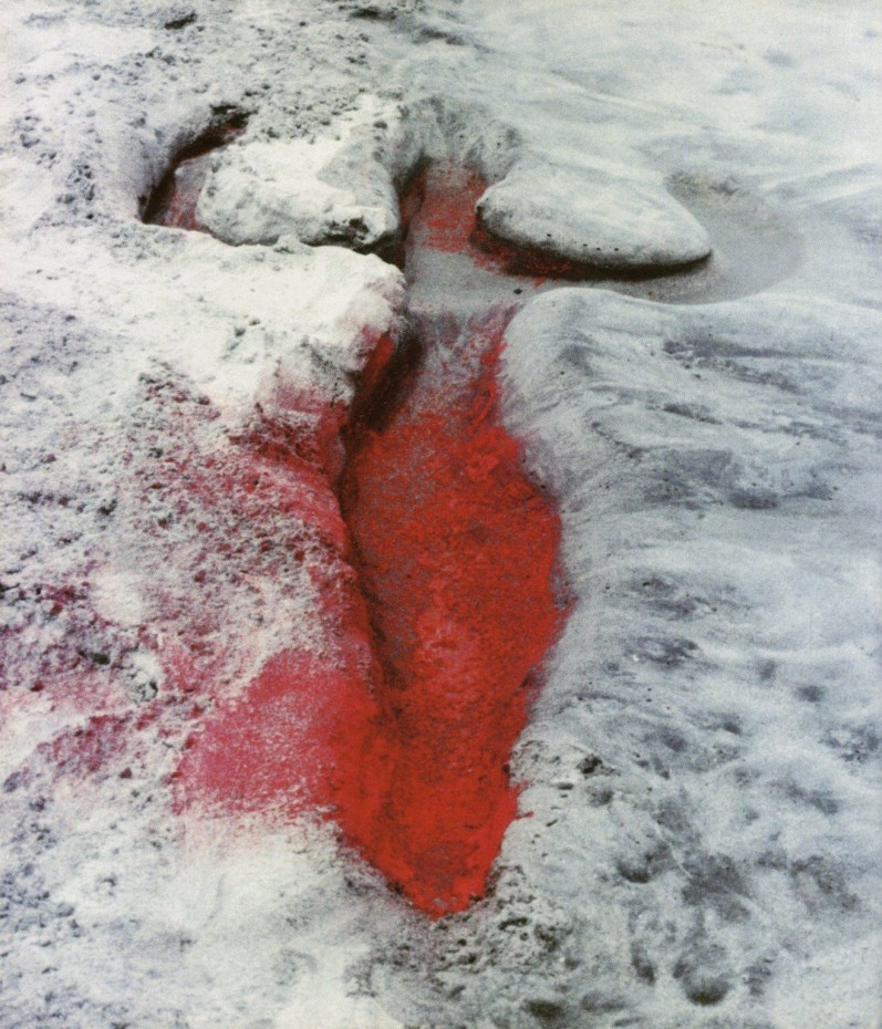Detail: Ana Mendieta, Silueta Works in Mexico, 1973-77 © The Estate of Ana Mendieta Collection, LLC.⁣⁣⁣