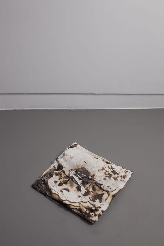 Anya Gallaccio, Untitled 'snow', 2013