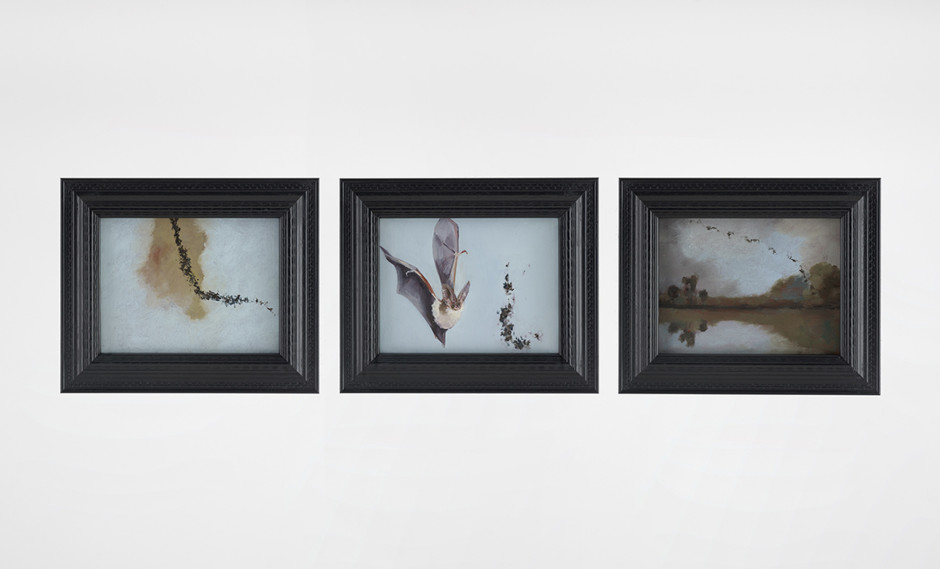 Bat Opera, 2016  oil on canvas paper  frame size, each:  24.1 x 29.2 x 2.2 cm  9 ½ x 11 ½ x ⅞in.