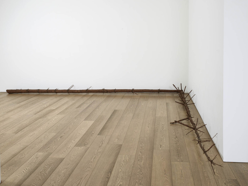 still.life. (pine tree laying in a corner), 2008