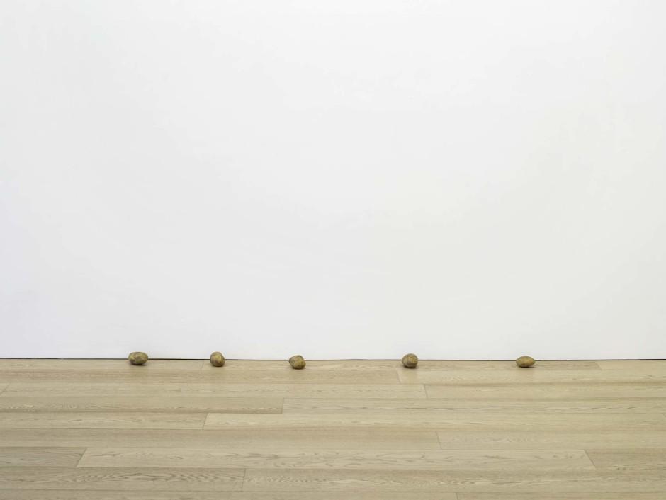 still.life. (five big potatoes in a line), 2009