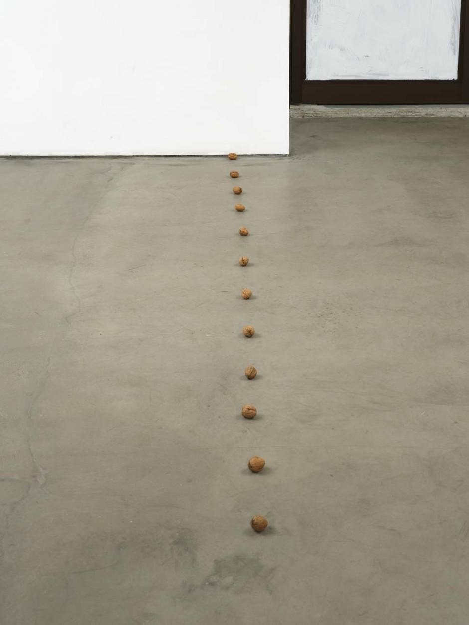 still.life. (twelve walnuts in a line), 2009