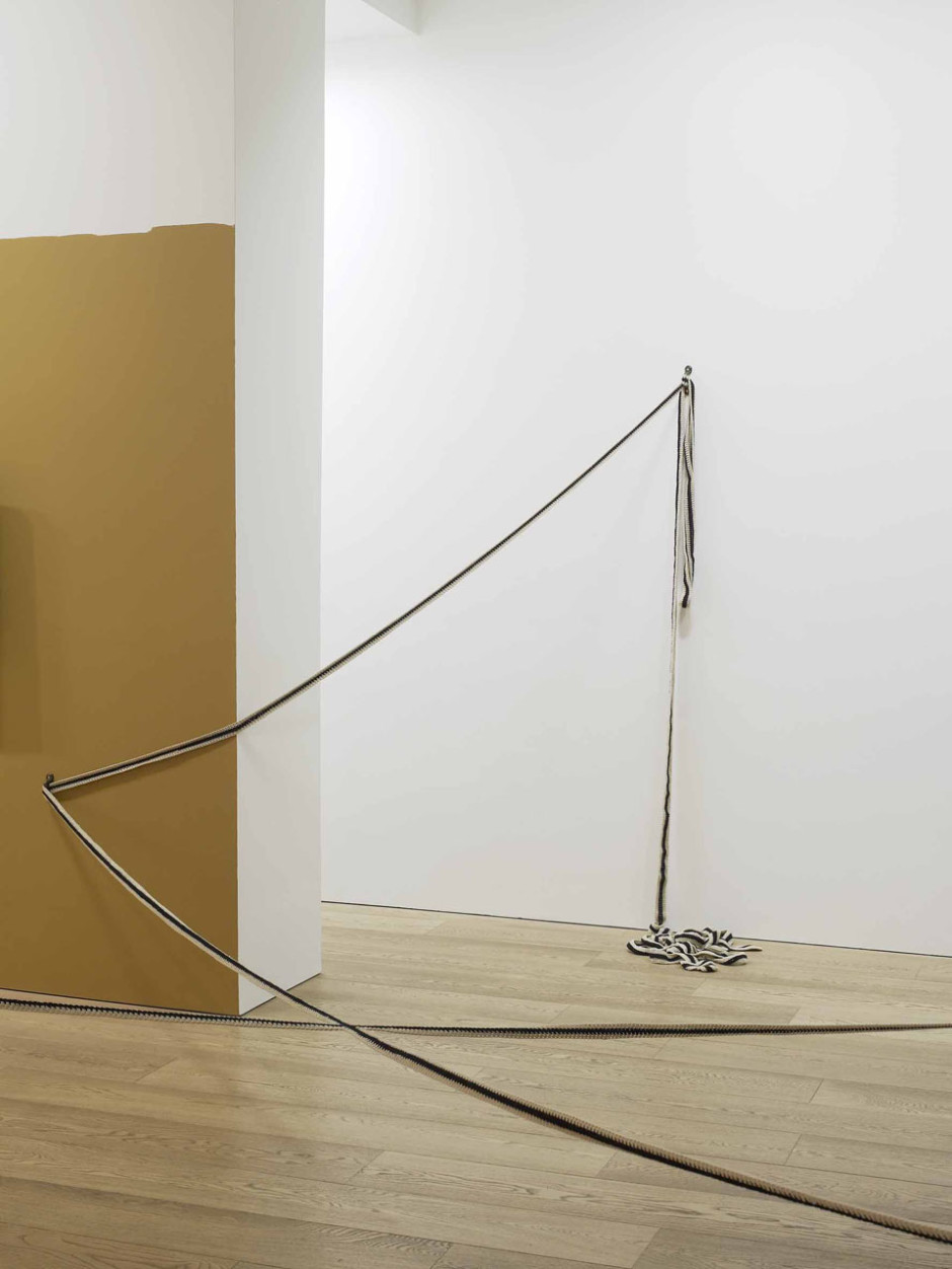 The Bodily Experience of a physical Impracticality, 2010