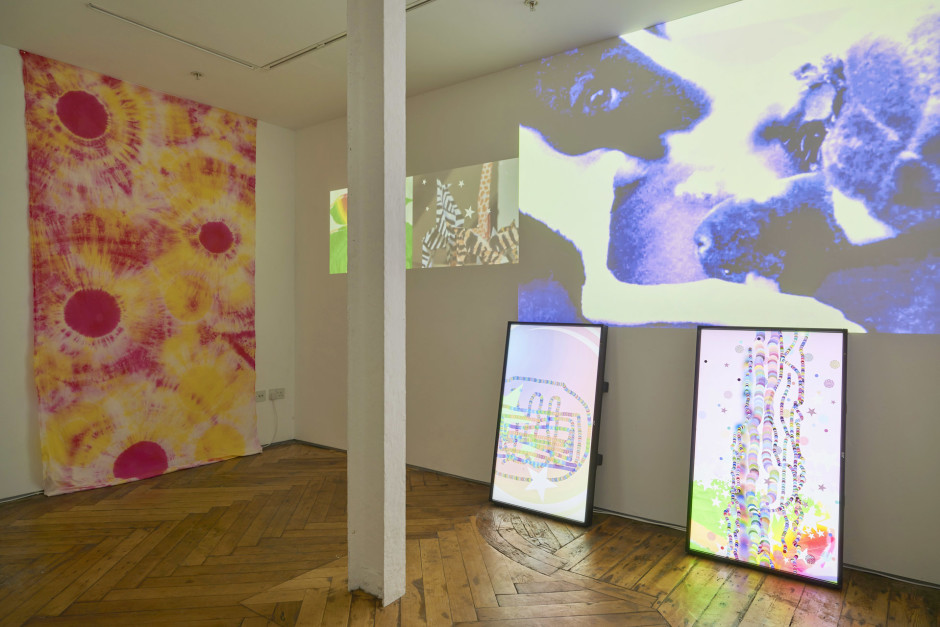 Installation view, 2015