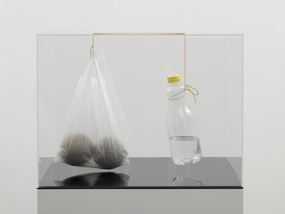 SELF PORTRAIT AS A RETENTION AND FLOW DIAGRAM 3, 2009  perspex, string, liquid, plastic bottle, plastic bag, coconuts  46.0 x 60.8 x 60.8 cm 18 1/8 x 23 7/8 x 23 7/8 in.
