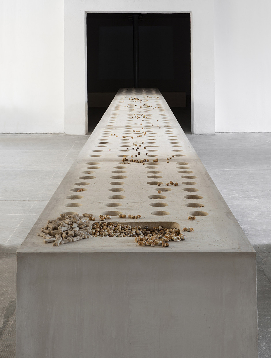 Untitled, 2014  plaster, metal ball bearings, dog biscuits  85.5 x 1200.0 x 77.0 cm 33 5/8 x 472 7/16 x 30 5/16 in.