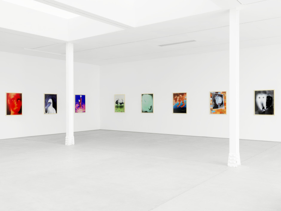 Installation view, 2018 Photo by Stefan Altenburger