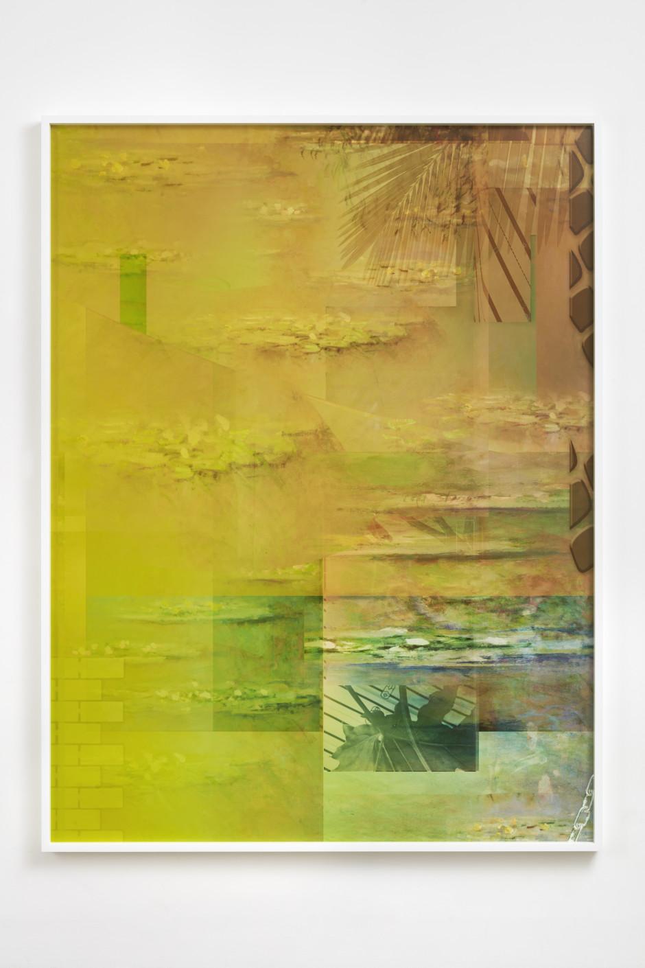 Nymphaea alba, 2018  archival pigment print  205 x 156 x 5.7 cm / 80 ¾ x 61 ⅜ x 2 ¼ in