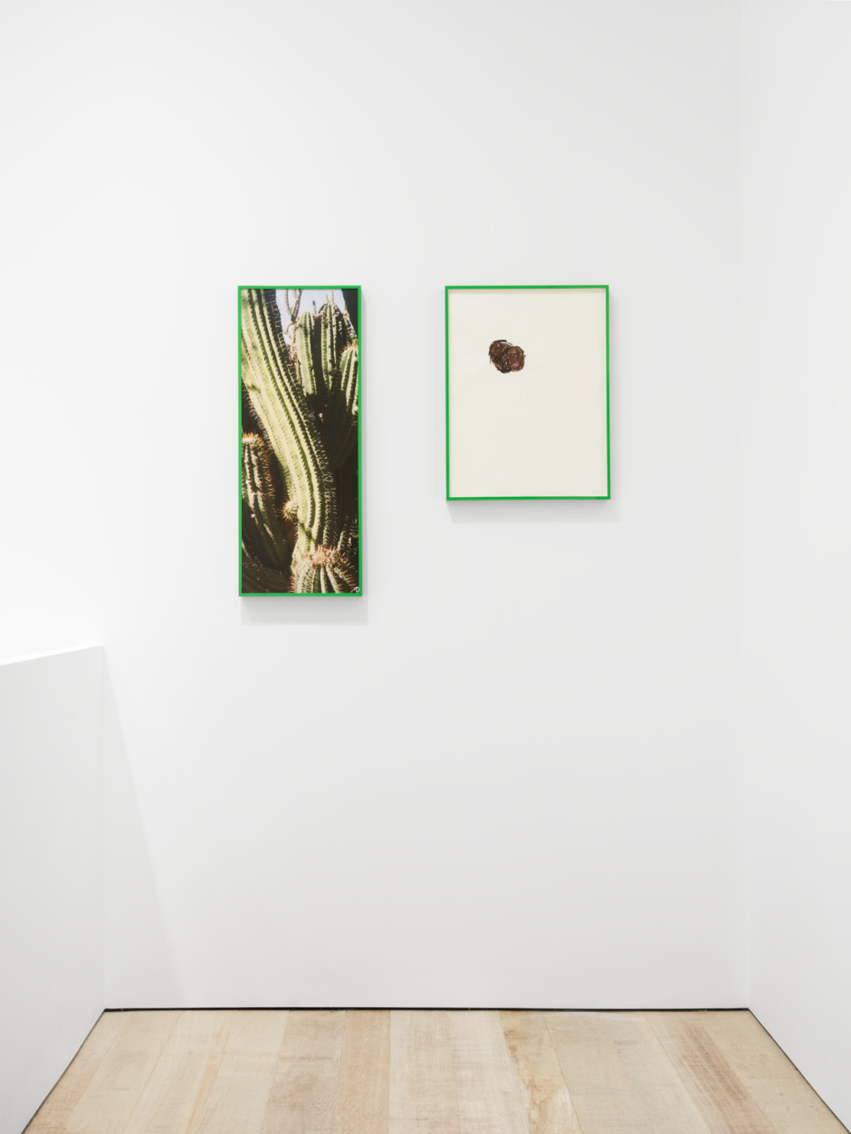 Installation view, Martine Syms, SOFT at Sadie Coles HQ, 8 Bury St, London, 25 May - 3 July 2021  Photography by Eva Herzog