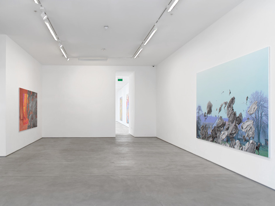 Installation view, The Intelligence of Nature, Sadie Coles HQ 62 Kingly Street, W1, on view  Photography by Stefan Altenburger