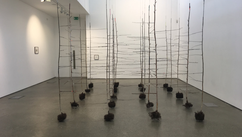 THE PAST IS A FOREIGN COUNTRY: ANITA GROENER AT UILLINN: WEST CORK ARTS CENTRE, SKIBBEREEN, IRELAND. 31 AUG -12 OCT