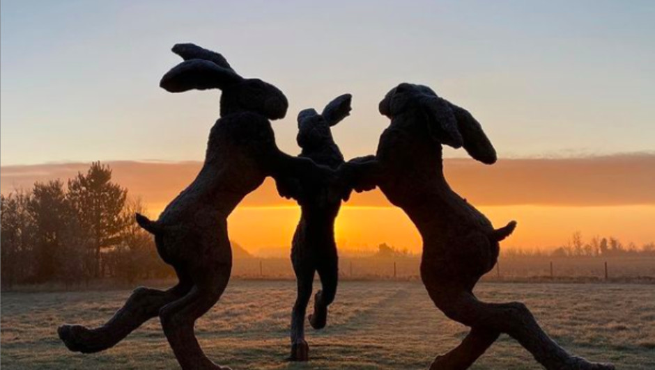 Sophie Ryder's 'Dancing Hares' at Sunrise. Sophie Ryder, Dancing Hares, 1998, Bronze, 457 x 732 x 732cm Photo Credit Hignell Galery and the artist