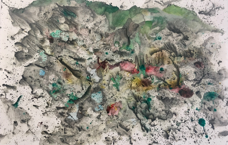 Michele Colburn Gunpowder, watercolo, and ink on paper 61 x 76.2 cm. 24 x 30 in. Series: Gun Powder Signed and dated COLM/002