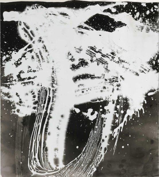Wang Dongling 王冬龄, More than White, Rain 非白.雨, 2013