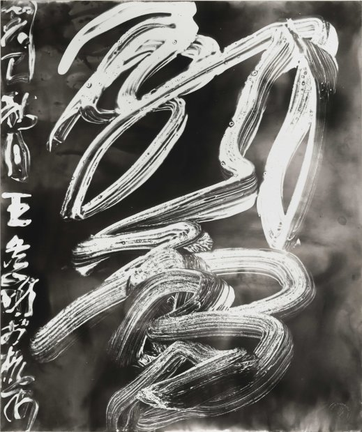 Wang Dongling 王冬龄, Dancing Snow 飘雪, 2013